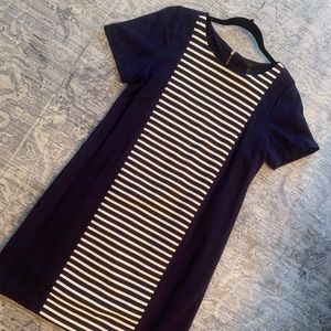 J.Crew navy blue striped dress